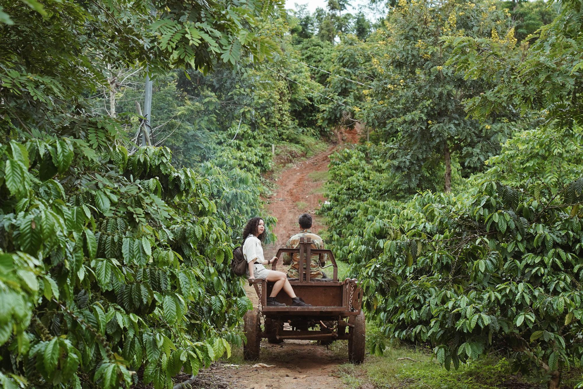 Những vùng đất cà phê Việt Nam hiện lên tuyệt đẹp qua góc nhìn của travel blogger Nhị Đặng: Nước mình còn nhiều nơi phải đi đến thế! - Ảnh 9.