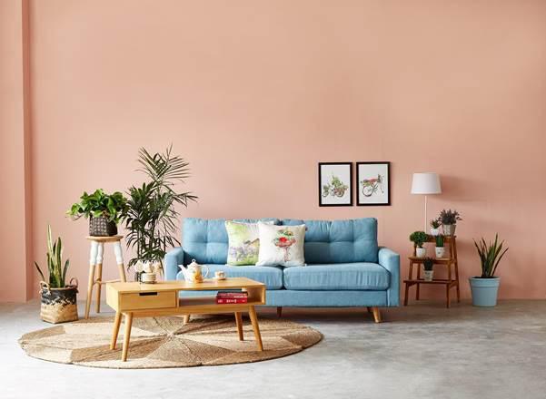 Làm mới căn hộ cho thuê để thu hút khách hàng ngay từ cái nhìn đầu tiên - Ảnh 2.