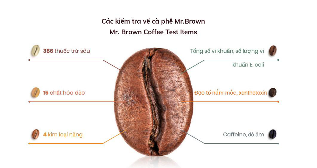 Vén màn bí mật quy trình sản xuất cà phê lon - Ảnh 2.
