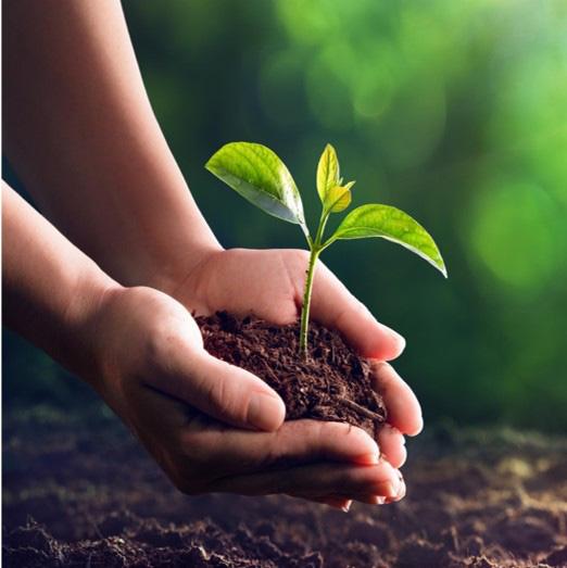 NutiFood được bình chọn Top Doanh nghiệp có môi trường làm việc tốt nhất Châu Á 2020 - Ảnh 2.
