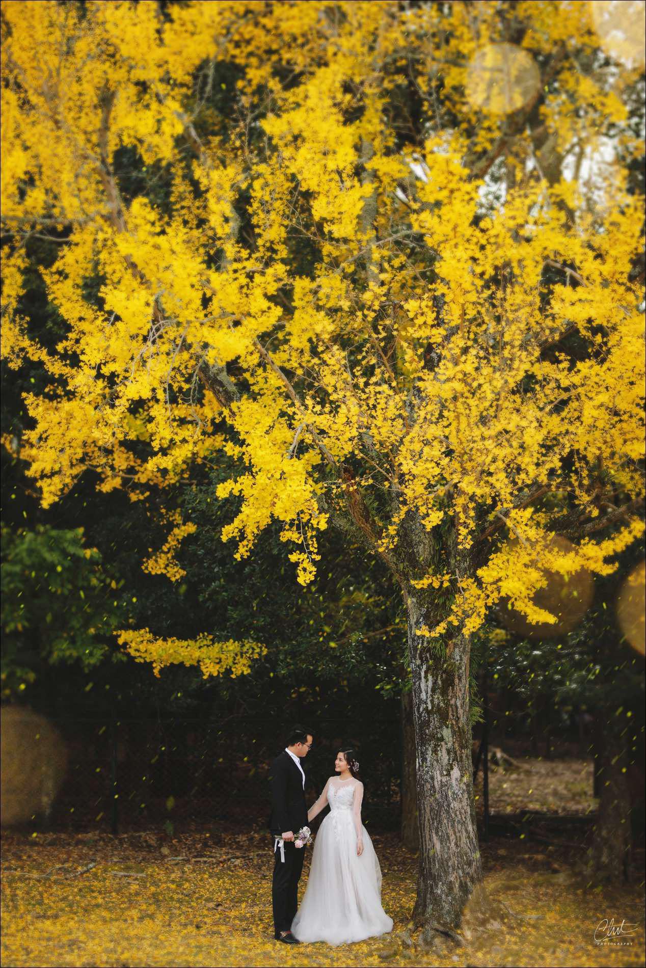 Bộ ảnh cưới 4 mùa bên nhau và cái kết viên mãn của 9 năm thanh xuân - Ảnh 10.