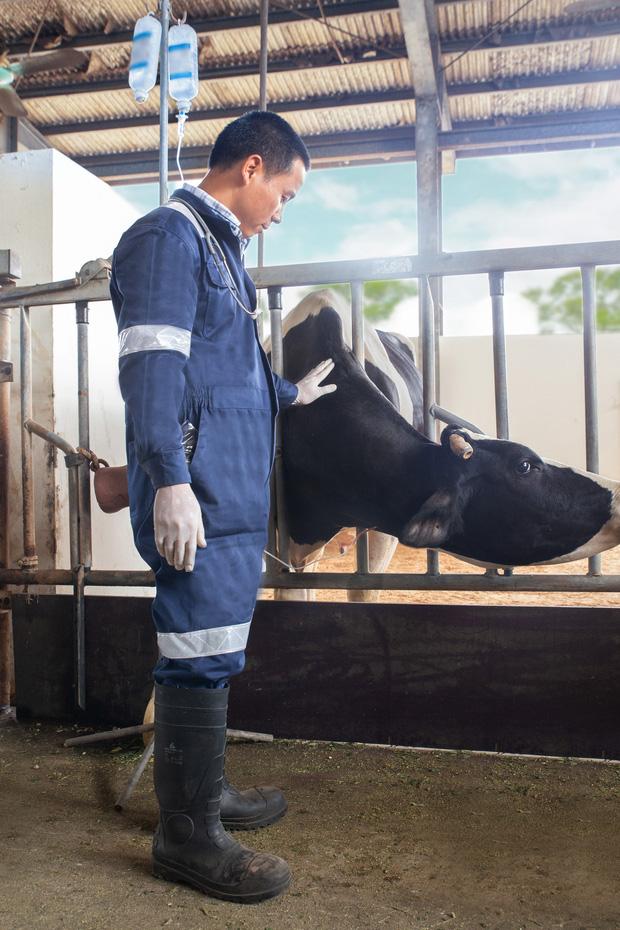 Quy trình sản xuất sữa chuẩn an toàn và thuần khiết hóa ra lại hay ho thế này! - Ảnh 2.