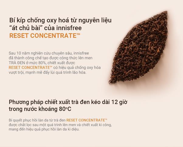 """""""Bắt bệnh"""" làn da cuối năm với quy trình skincare chiết xuất trà đen lên men chuẩn không cần chỉnh - ảnh 4"""