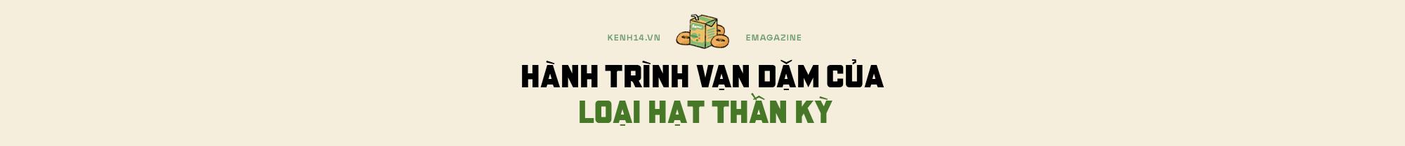 Hạt vàng đậu nành và những giá trị theo cùng sức khỏe người Việt - Ảnh 1.