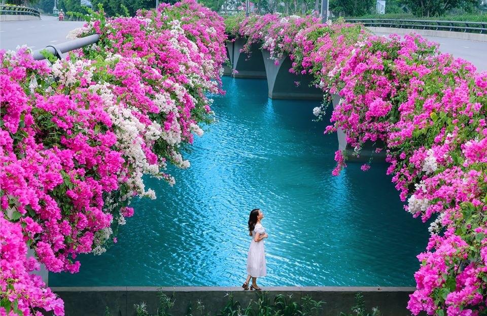 Hơn một triệu bông hồng nở hoa rực rỡ khắp Ecopark - Ảnh 13.