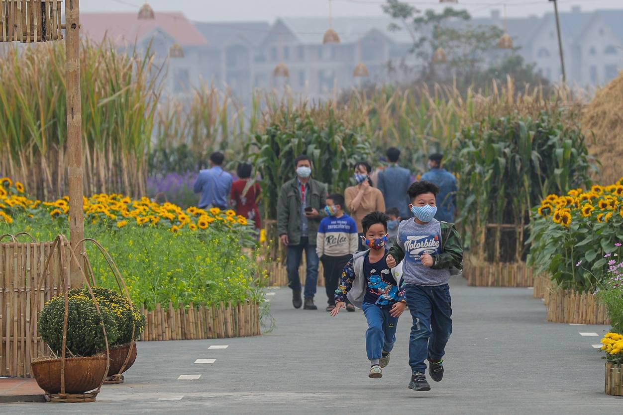 Home Hanoi Xuan 2021 - Nơi gặp gỡ hoa cỏ mùa xuân - Ảnh 9.