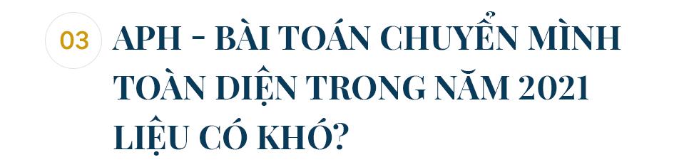 Việt Nam sắp có nhà máy nguyên liệu xanh lớn nhất Đông Nam Á: An Phát Holdings tham vọng gì? - Ảnh 7.
