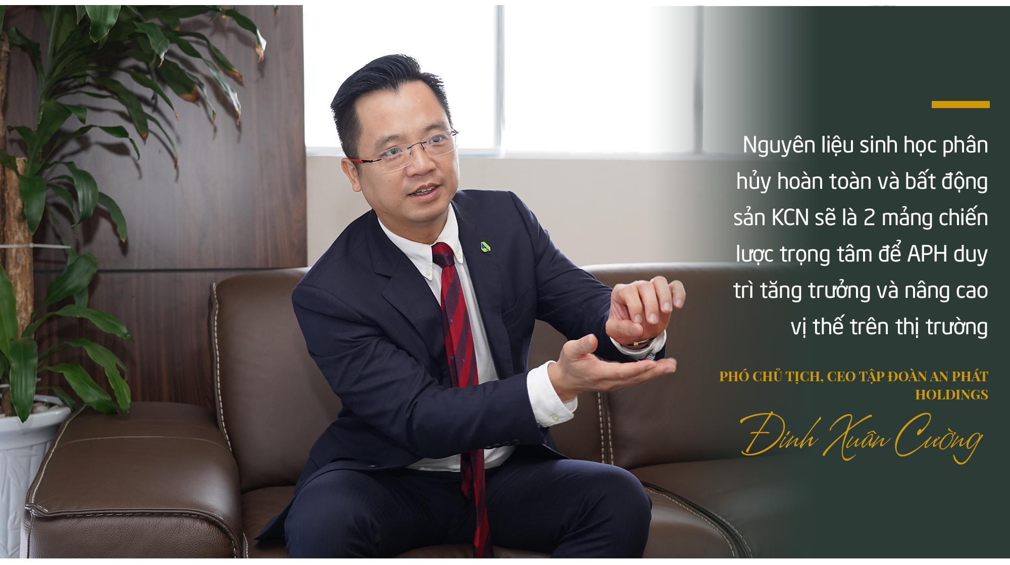 Việt Nam sắp có nhà máy nguyên liệu xanh lớn nhất Đông Nam Á: An Phát Holdings tham vọng gì? - Ảnh 8.