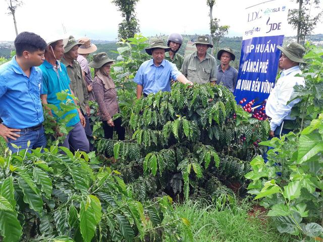 Syngenta chung tay vì nền nông nghiệp phát triển bền vững - Ảnh 2.