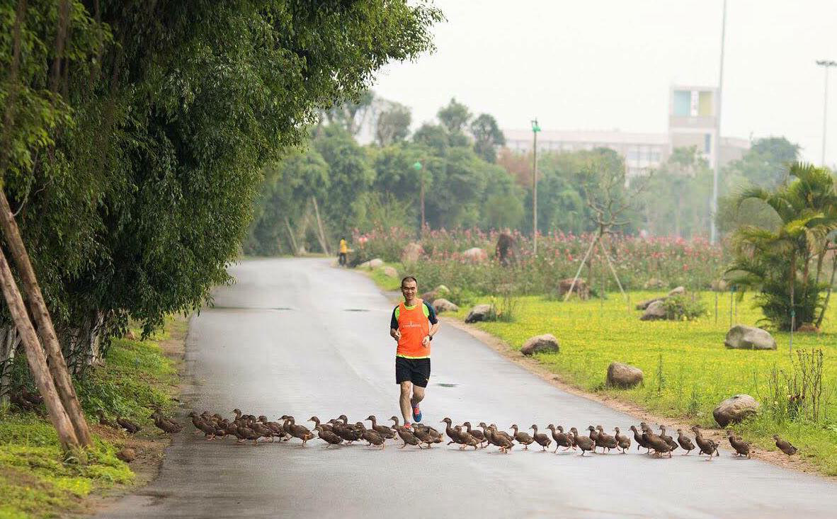 """Ecopark Marathon 2021 - Ngắm cung đường chạy giữa thiên nhiên """"siêu chất"""" trước giờ G - Ảnh 4."""