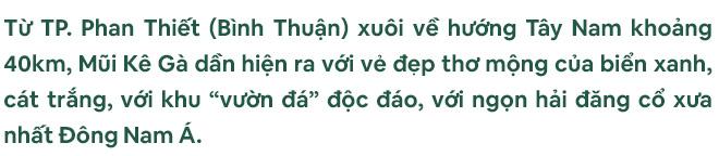 Khám phá thiên nhiên kỳ thú và kiếm tìm cơ hội đầu tư hấp dẫn tại thị trường Bình Thuận - Dễ hay khó? - Ảnh 1.