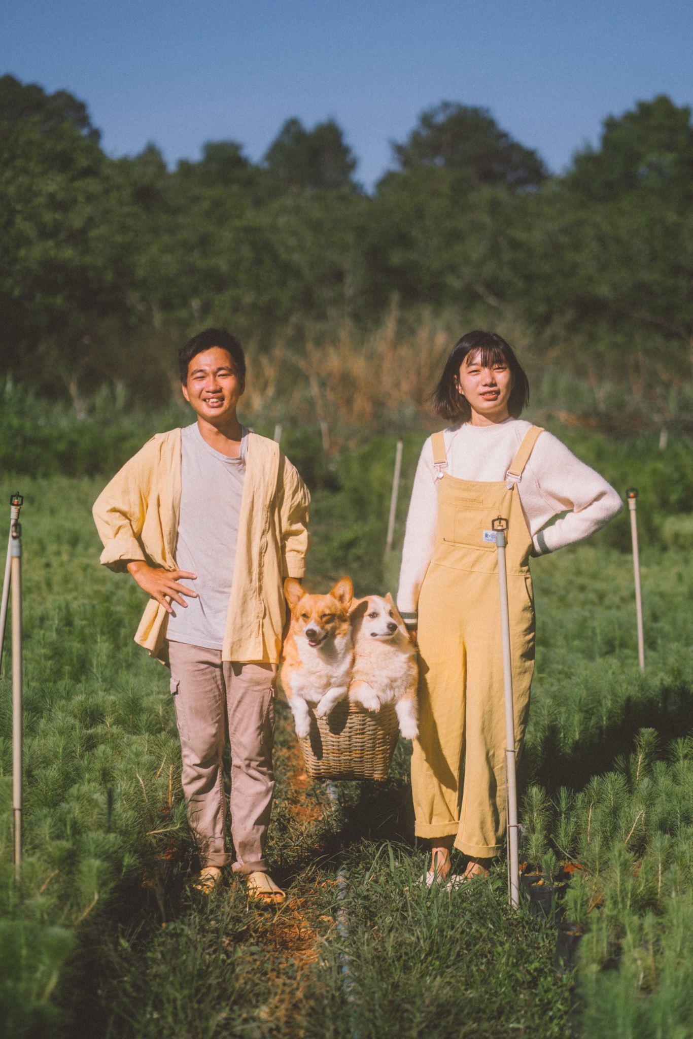 Giấc mơ về Đà Lạt của cặp đôi 9x và khu vườn cún bên bờ suối mộng mơ - Ảnh 2.