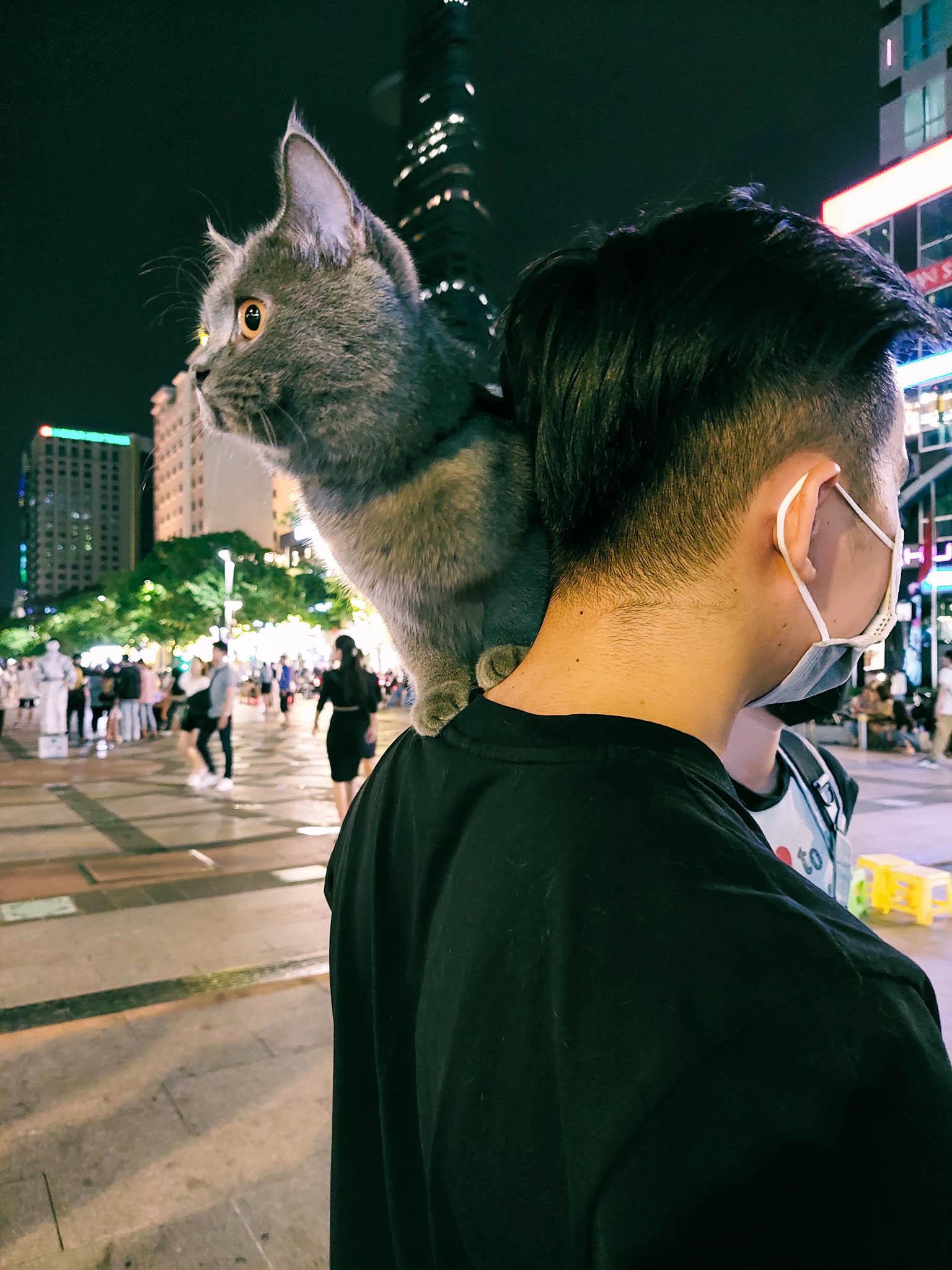 Sài Gòn - thành phố không ngủ qua ống kính Galaxy A72 - Ảnh 8.