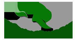 Phế Liệu Quang Đạt và Mua Phế Liệu 247 chuyên mua phế liệu giá cao toàn quốc - Ảnh 1.