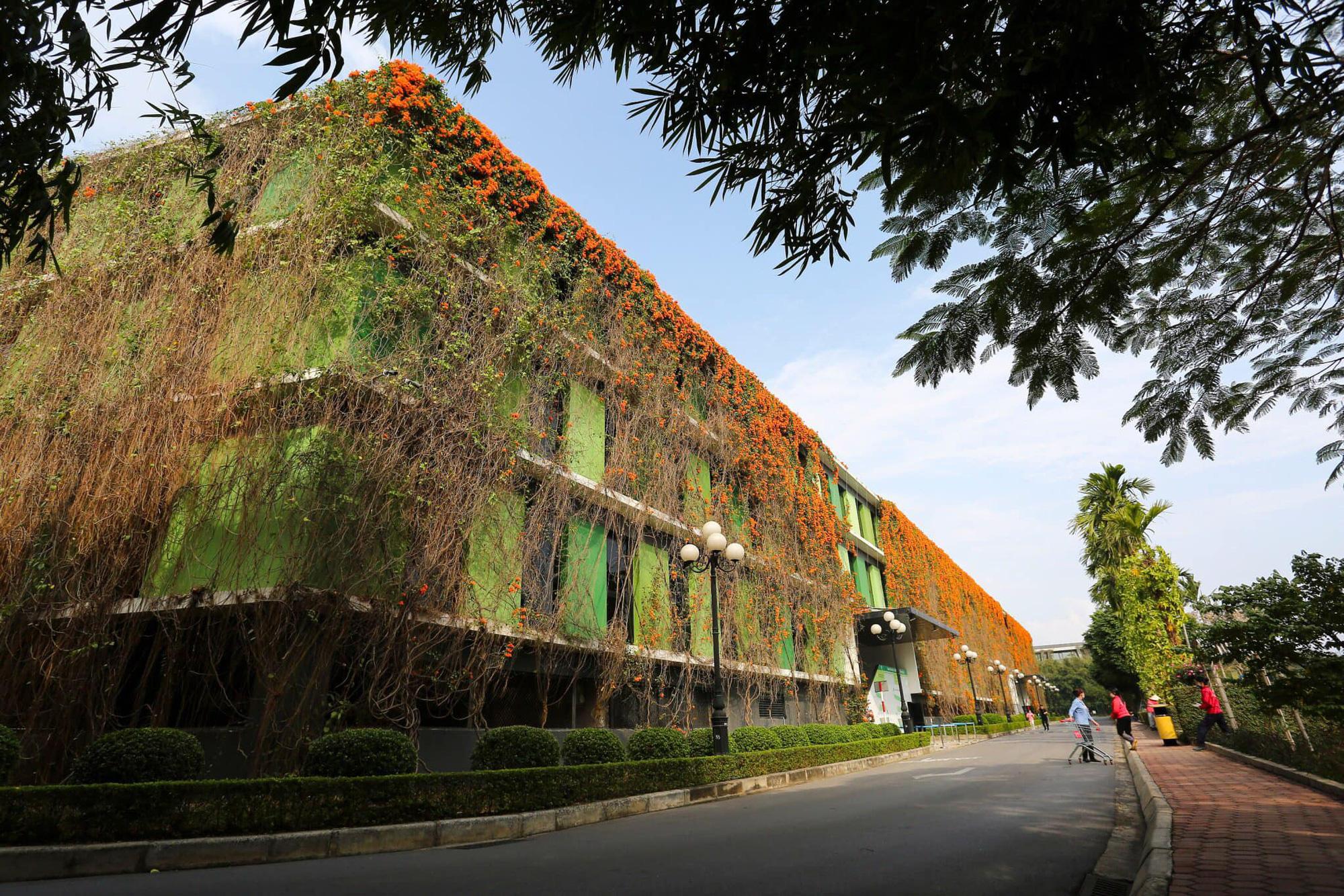 """Campus xanh """"quên lối về"""" của dân công nghệ ngay tại Hà Nội - Ảnh 2."""