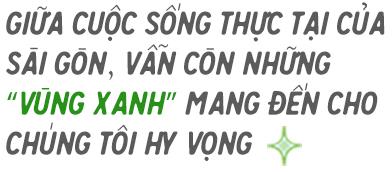 """""""Vùng Xanh Hy Vọng"""" vực lòng người Sài Gòn giữa tháng ngày khó quên - Ảnh 1."""