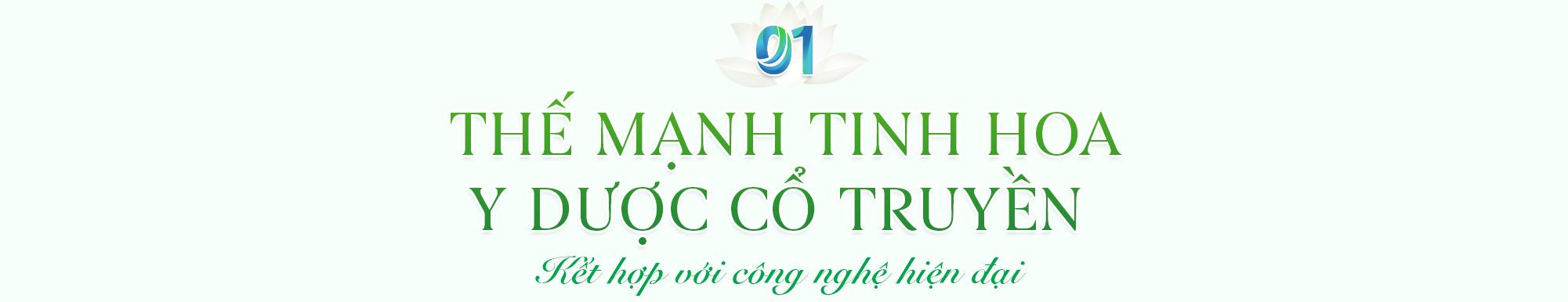 Dược phẩm Hoa Linh Bông sen trắng vươn mình để chất lượng tỏa hương - Ảnh 2.