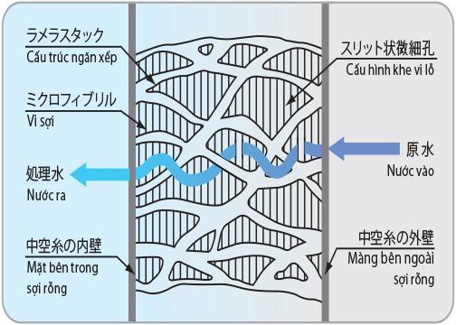 Công nghệ màng lọc sợi rỗng trong thiết bị lọc nước Mitsubishi Cleansui - Ảnh 2.