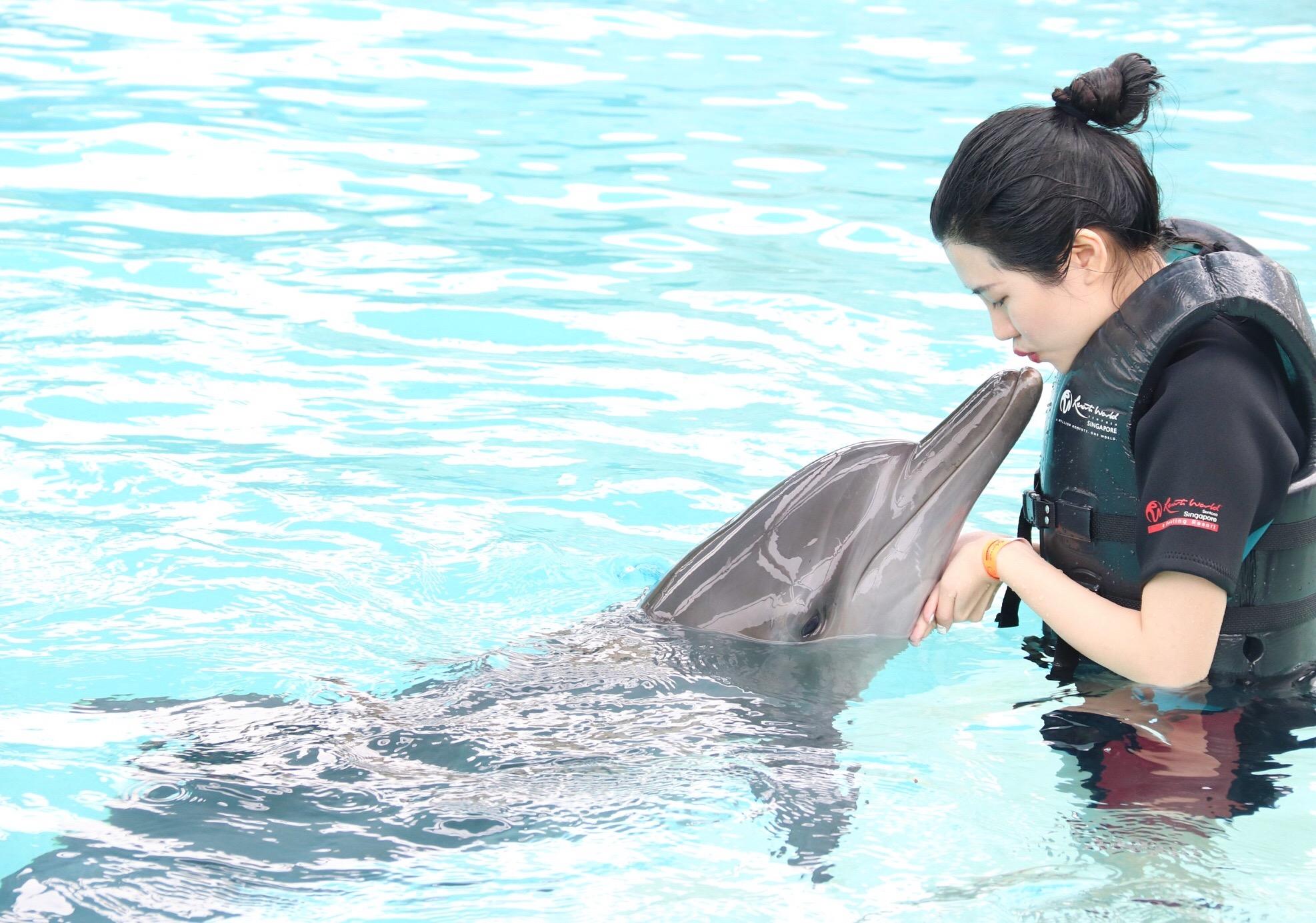 Hoa hậu Du lịch Emily Hồng Nhung đón sinh nhật đặc biệt cùng những chú cá heo tại Singapore - Ảnh 2.