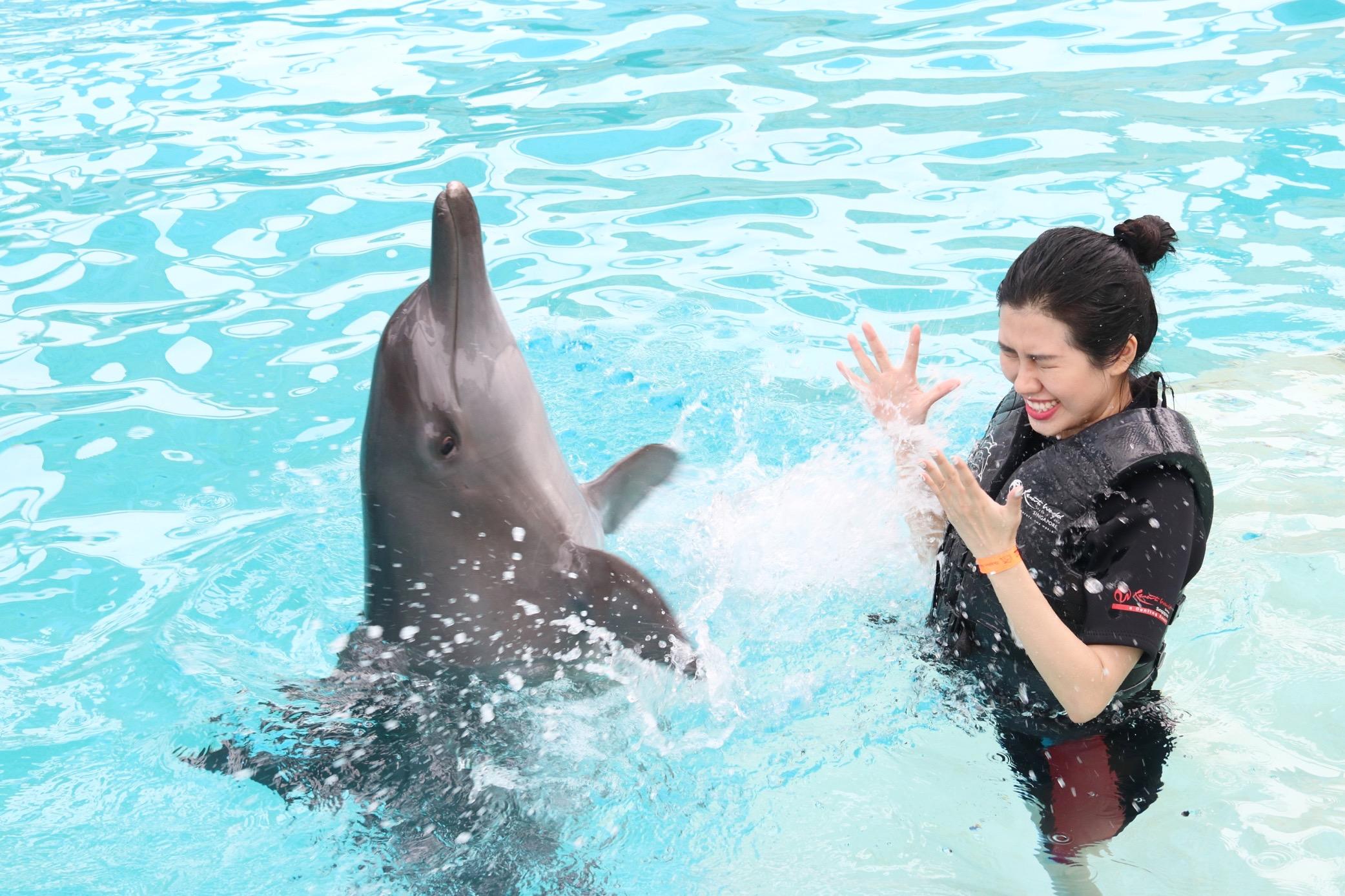 Hoa hậu Du lịch Emily Hồng Nhung đón sinh nhật đặc biệt cùng những chú cá heo tại Singapore - Ảnh 3.