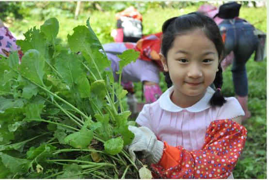 Trải nghiệm du lịch nông nghiệp tại Đài Loan với những cung đường đẹp ngất ngây, đáng giá từng xu - Ảnh 7.