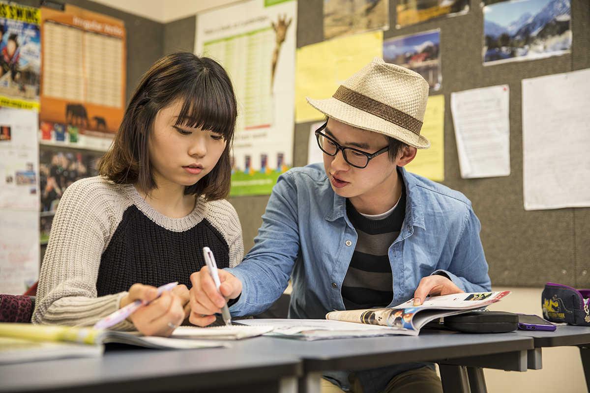Du học New Zealand: Chọn Đại học hay Học viện Kỹ nghệ - Ảnh 2.