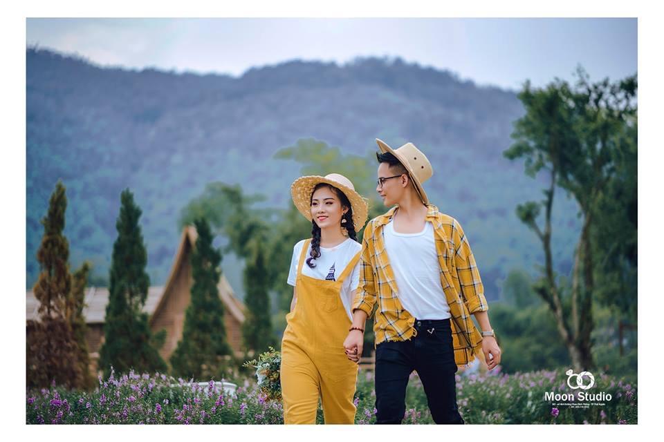 Phim trường Thái Nguyên đang gây sốt với cánh đồng cúc họa mi - Ảnh 3.