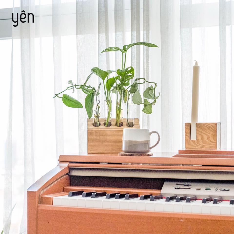 Sống xanh như Helly Tống với The Yên Concept - Ảnh 3.