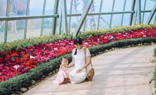Nhà kính với hàng ngàn loại hoa xinh đẹp