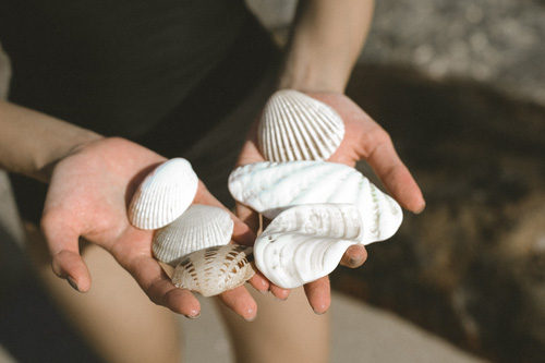 Sưu tầm những vỏ sò đẹp là thú vui của mình mỗi lần dạo chơi  trên bãi biển