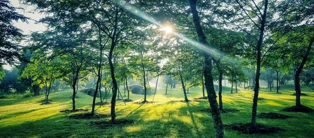 Tập đoàn Ecopark mở rộng đối tác phát triển và phân phối - Ảnh 1.