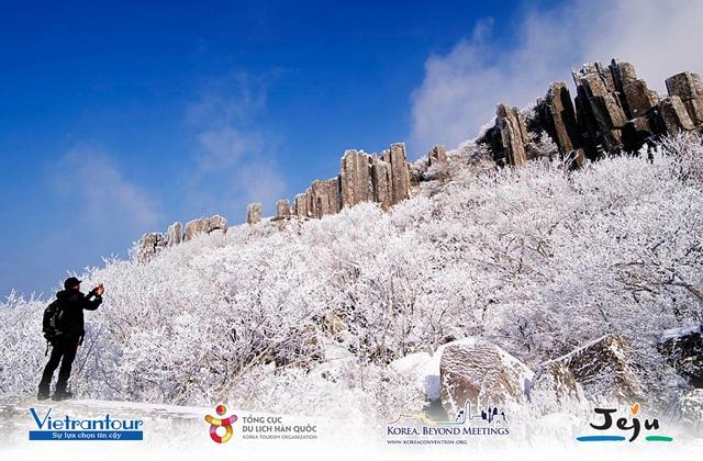 Doanh nghiệp có thêm nhiều lựa chọn nghỉ dưỡng hấp dẫn với tour mùa đông Hàn Quốc từ Vietrantour - Ảnh 1.