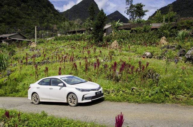 Bạn chọn mẫu sedan nào trong dịp mua sắm cuối năm - Ảnh 1.