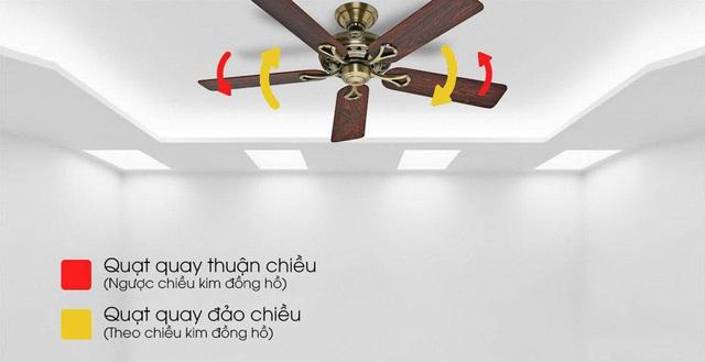 Lý do quạt trần trang trí đang trở thành xu hướng trong nội thất - Ảnh 1.