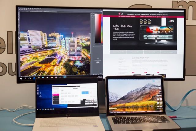 3 tiêu chí lựa chọn màn hình dành cho dân đồ họa năm 2019 - Ảnh 3.