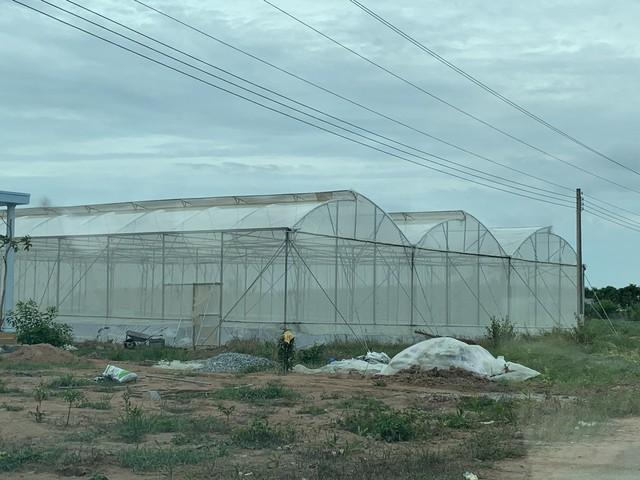 farmstay g7 - photo 1 1565838174628394816067 - Farmstay G7 – kênh đầu tư hứa hẹn sinh lời kép
