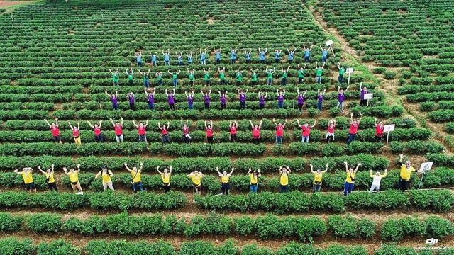 C.T Group hướng đến một Môi trường làm việc tốt nhất Việt Nam - Ảnh 1.