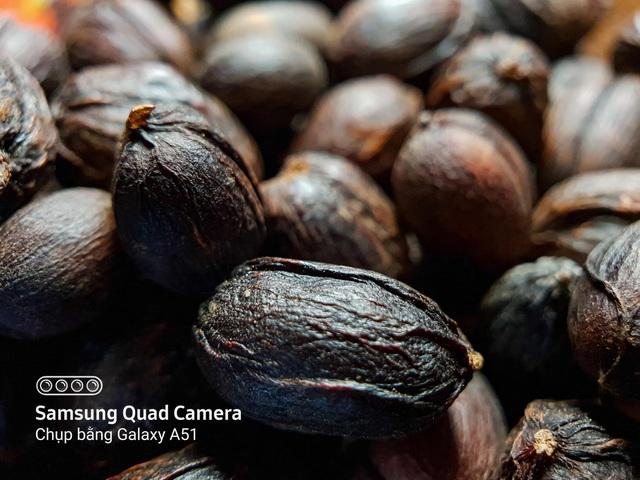 Nhâm nhi cà phê bao lâu nhưng đã bao giờ bạn tận mắt nhìn kỹ xem hạt cà phê trông như thế nào chưa? - Ảnh 2.
