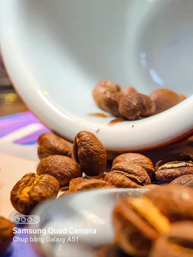 Nhâm nhi cà phê bao lâu nhưng đã bao giờ bạn tận mắt nhìn kỹ xem hạt cà phê trông như thế nào chưa? - Ảnh 4.