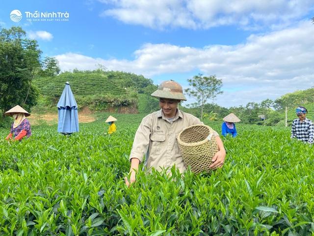 Thái Ninh Trà – thương hiệu trà Thái Nguyên truyền thống - Ảnh 2.