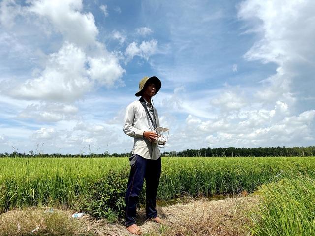 Lối đi nào cho ngành sản xuất lúa gạo Việt Nam? - Ảnh 2.