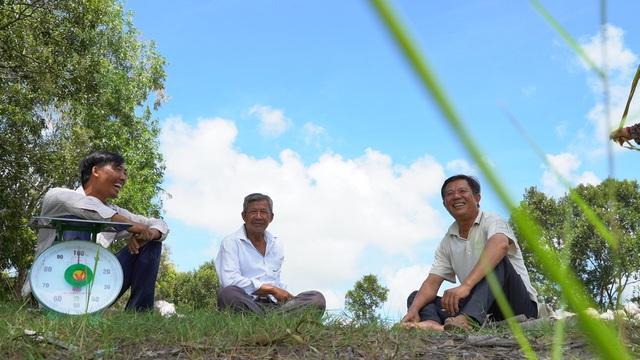 Lối đi nào cho ngành sản xuất lúa gạo Việt Nam? - Ảnh 3.