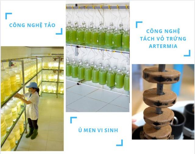 Quy trình sản xuất tôm giống thuần Việt chất lượng cao - Ảnh 2.