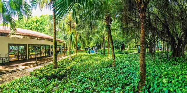 Khách xếp hàng cả cây số để xem nhà mẫu và mua nhà tại Ecopark - Ảnh 1.