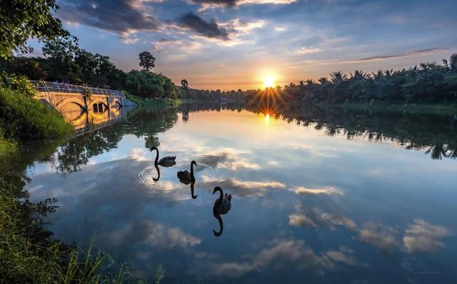 Ecopark được vinh danh khu đô thị tốt nhất châu Á - Ảnh 1.