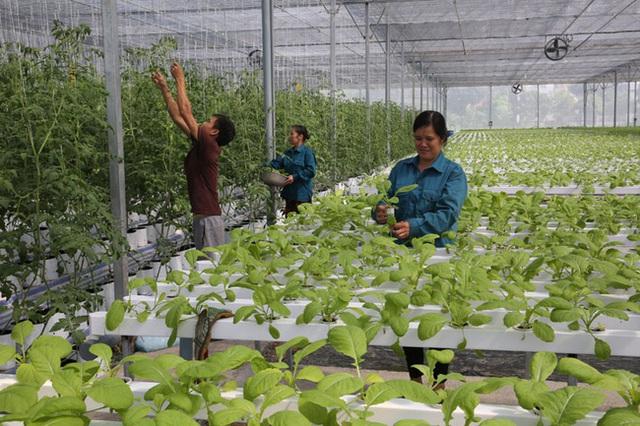 Nông dân thời công nghệ 4.0 - Ảnh 1.