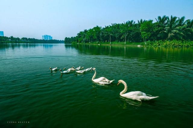 Vẻ đẹp hấp dẫn của Ecopark trong phút giao mùa