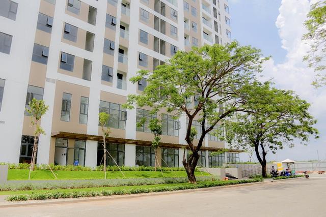 Trước ngày bàn giao, căn hộ Thủ Thiêm Dragon quận 2 được khách hàng đánh giá cao - Ảnh 2.