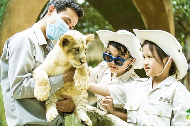 Vingroup khởi công dự án công viên chủ đề lớn bậc nhất tại Việt Nam - Ảnh 3.