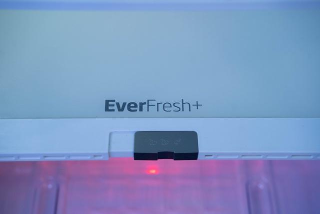 Có gì đặc biệt trong chiếc tủ lạnh sở hữu công nghệ ánh sáng vi chất? - Ảnh 2.